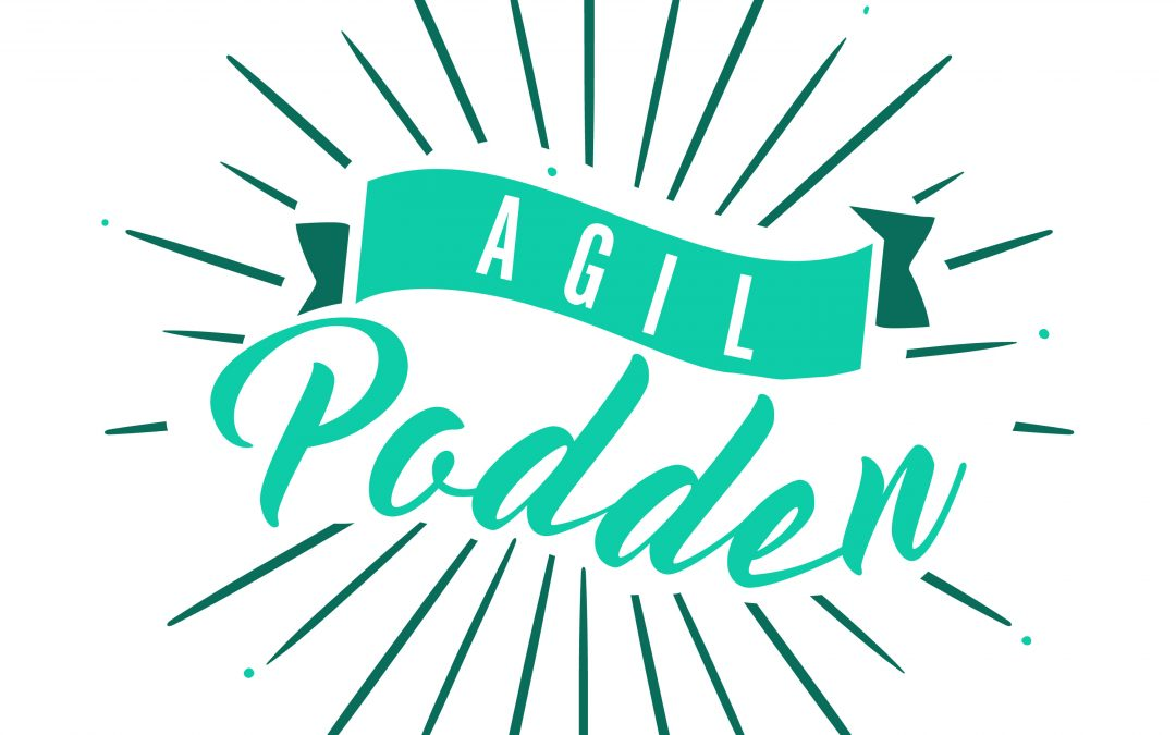 Niklas Modig – Lean & Agilt podcast
